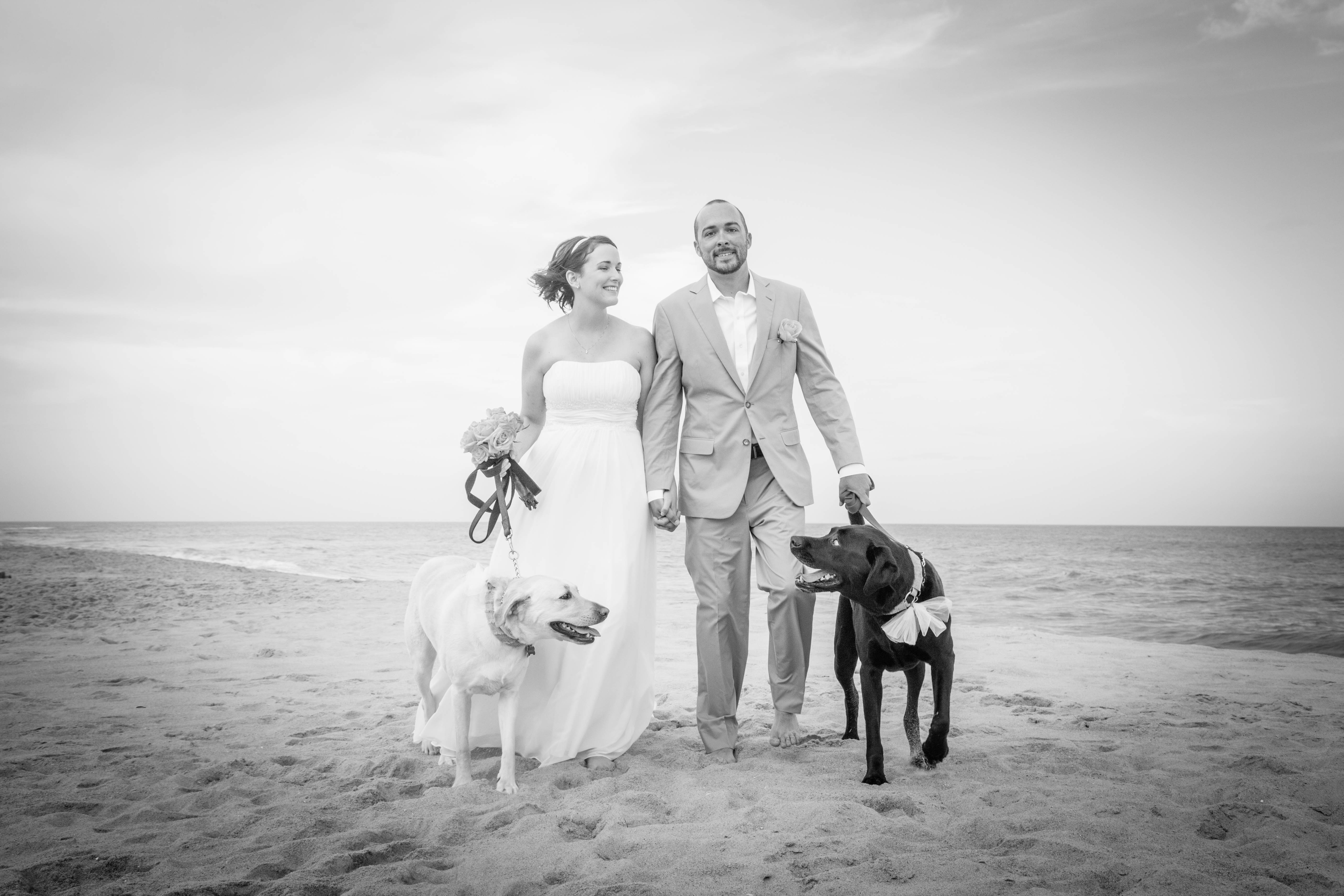 Kristen and Kyle celebrate their wedding day, along with Krisco and Skillet who certainly would be nowhere else on that special day.  Photo Credit: Sarah D'Ambra Photography